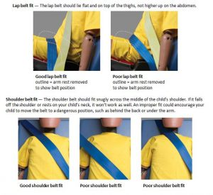 Booster seat belt fits